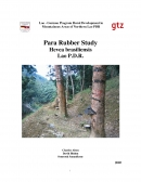 Para Rubber Cultivation in Northern Laos