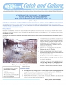 Update on the Status of the Cambodian Inland Capture Fisheries Sector With special reference to the Tonle Sap Great Lake