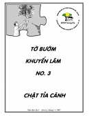 To buom khuyen lam so 3: chat tia canh