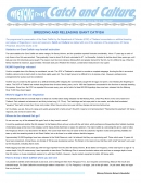 Breeding and Releasing Giant Catfish