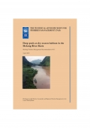 Deep pools as dry season habitats in the Mekong River BasinMekong Fisheries Management Recommendation No 3